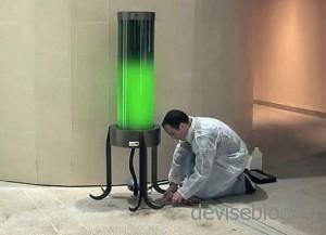Светильник с зелеными водорослями