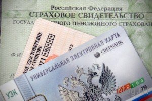 Электронный паспорт россиянина